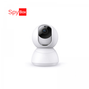 Smart 720P 1.0MP Wireless Wifi Camera