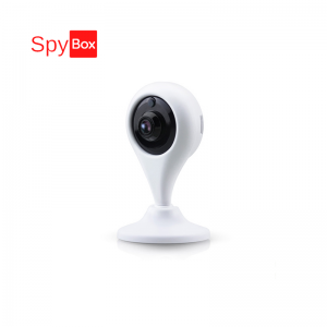 Smart 720P 1.0MP Wireless Wifi Camera